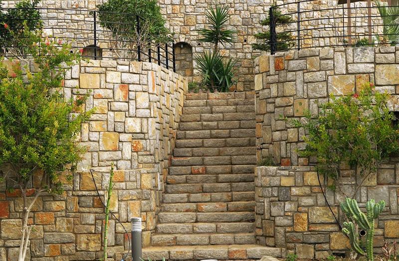 13.Tek Damar Merdiven Basamağı